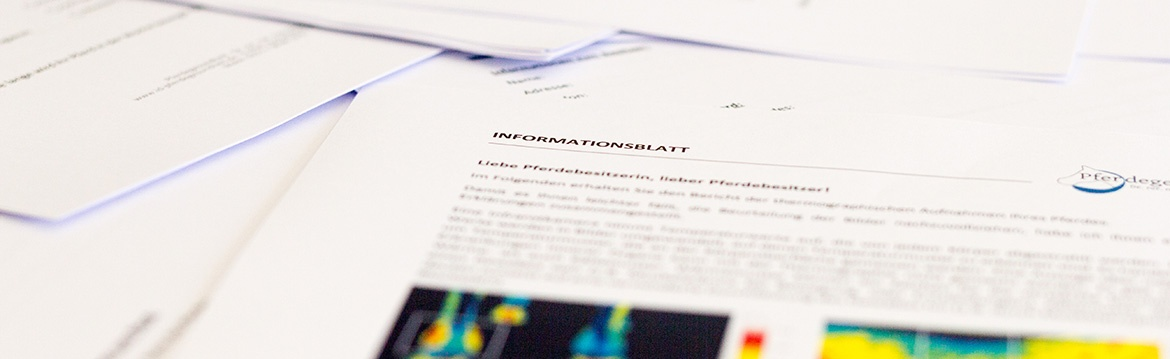 Informationsblatt Thermographie